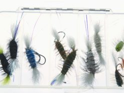 salmon dry fly bomber