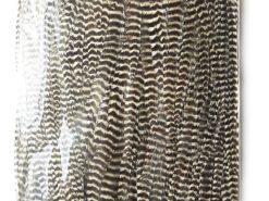 Metz giant saddle feathers